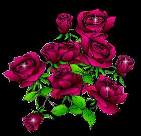 fleur_q8.jpg