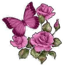 ruusutjaperhonen.jpg