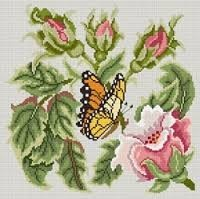 ruusunnuppuperhonen.jpg