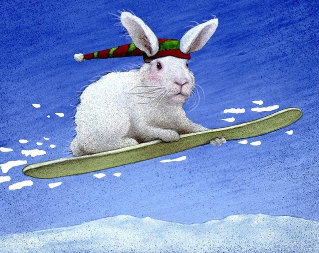 the-snow-bunny-will-bullas.jpg