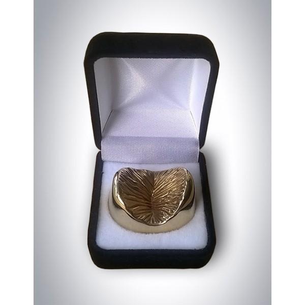 solid-bronze-anus.jpg