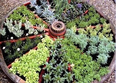 wagon-wheel-herb-garden.jpg