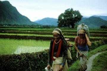 Nepal%20naiset.jpg