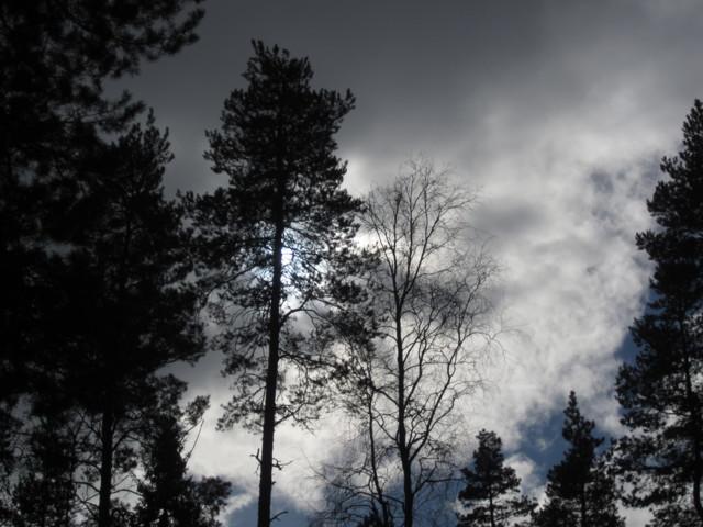 Auringonpimenys%20006.jpg