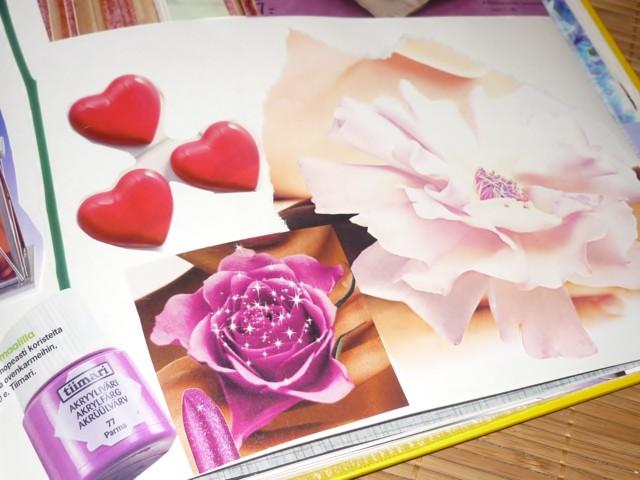 pinkki3.jpg