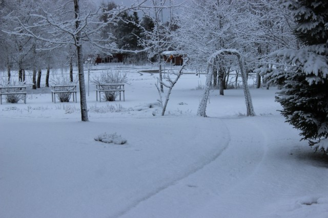 lumi%20takatalvi.jpg