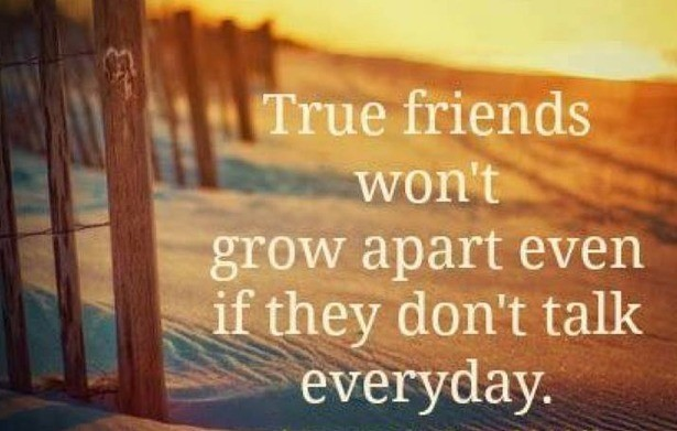 quotes-friendship-life-distance.jpg
