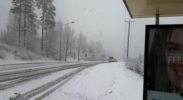 lumisade.jpg