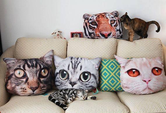 cat-cushions.jpg