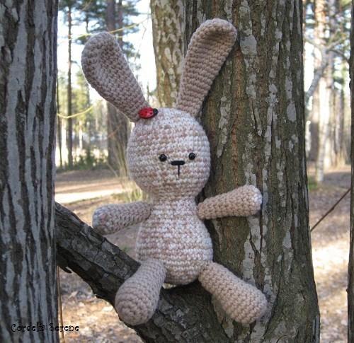 bunny009.jpg