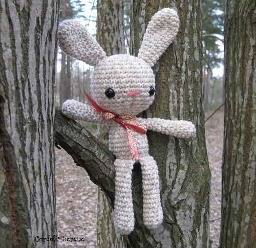 bunny017.jpg