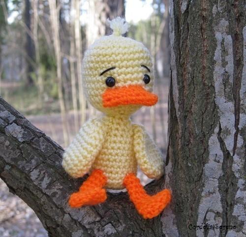 duck007.jpg