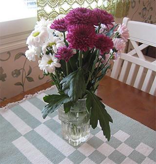 crysanteemit.jpg