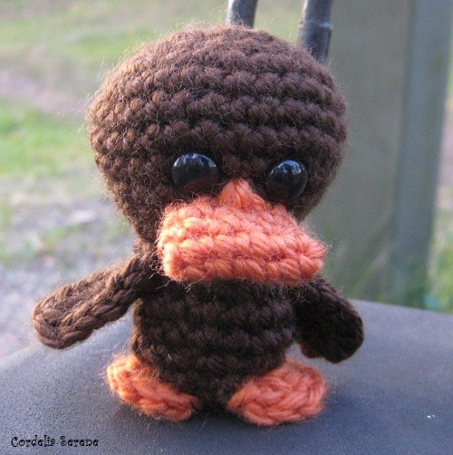 duck016.jpg