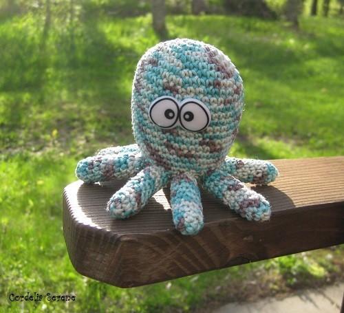 octopus016.jpg