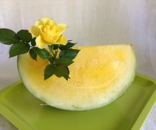 keltainen%20vesimelooni%201%20.jpg
