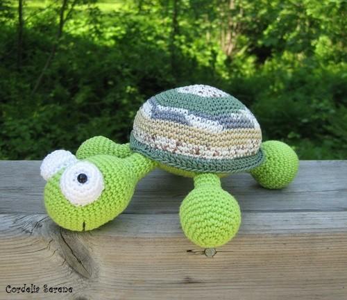turtle010.jpg