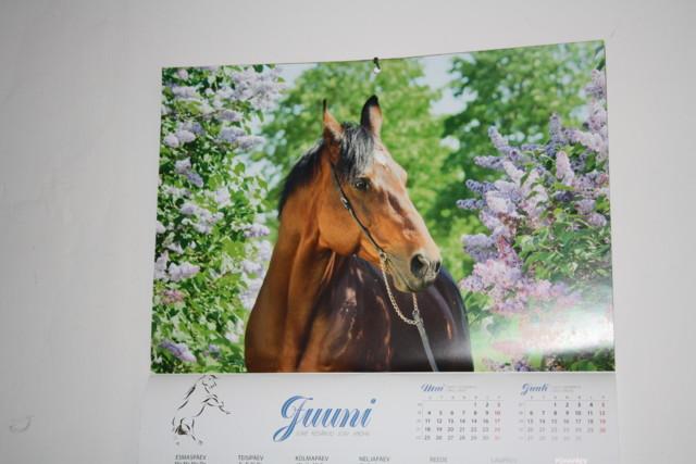 Jasmiinit%20076.jpg