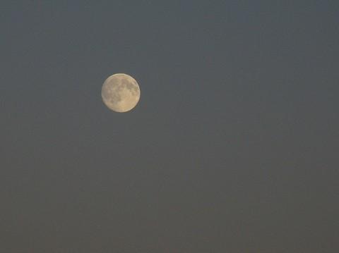 kuu1.jpg