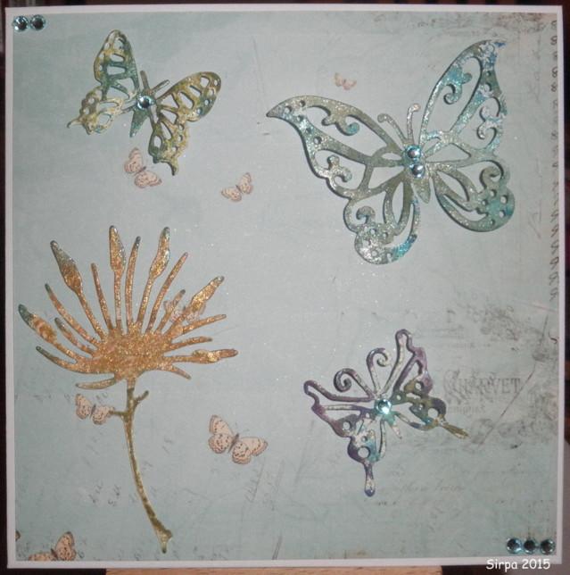Perhosia.jpg