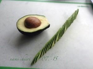 Avocado%203%20.jpg