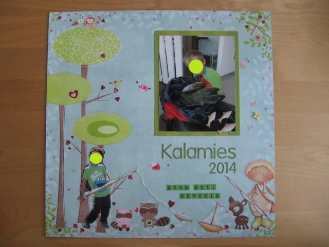 Kalamies_2.jpg