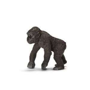 gorilla%20nuori%2014663.jpg
