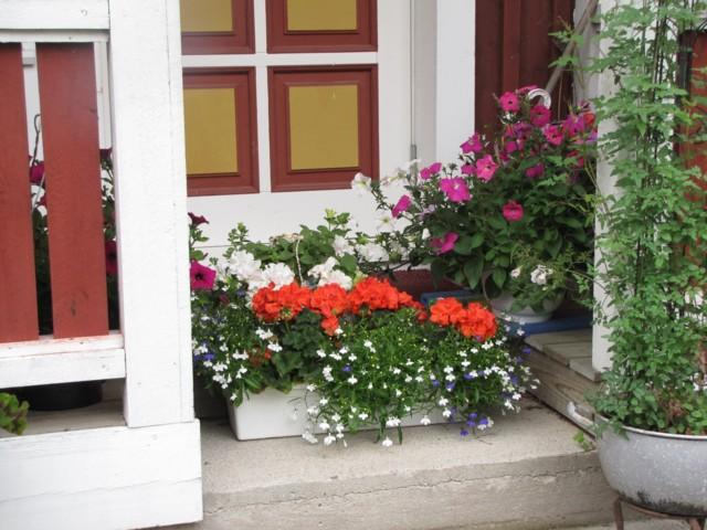 kukkasuoja1.jpg
