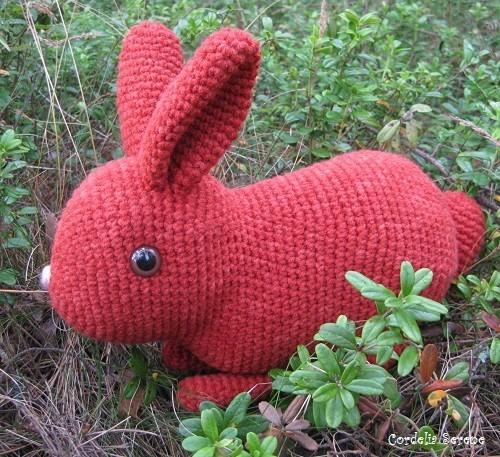 bunny012.jpg