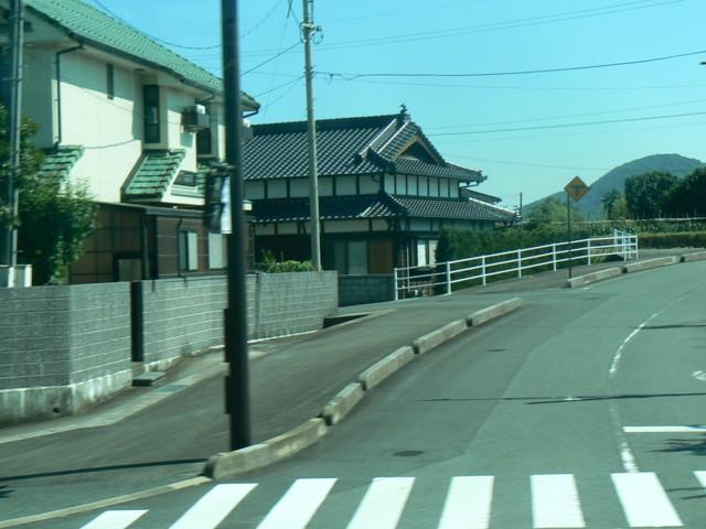 P1040328.jpg