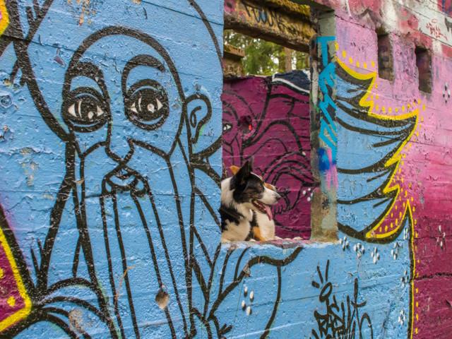 Graffitit-7a.jpg