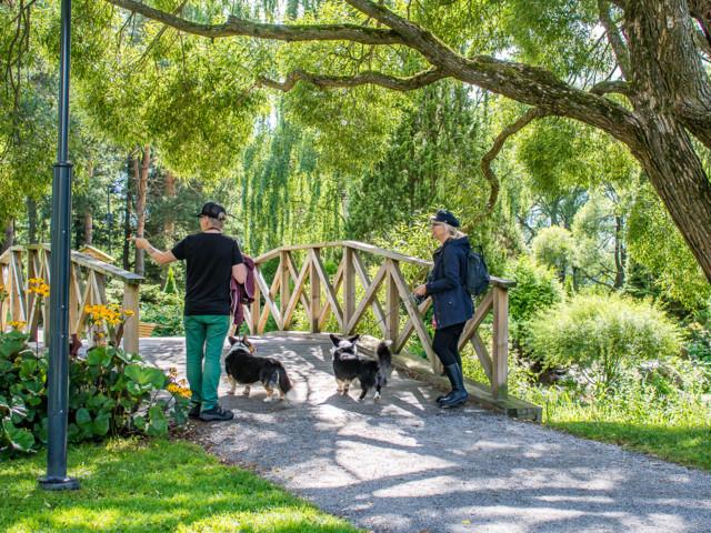 Arboretum-6.jpg