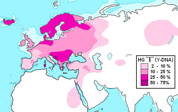 Haplogroup_I_%28Y-DNA%29a.jpg