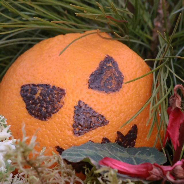 Halloweenia%20Karjaalla%20002.jpg