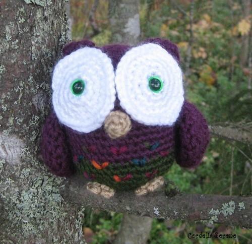 owl022.jpg