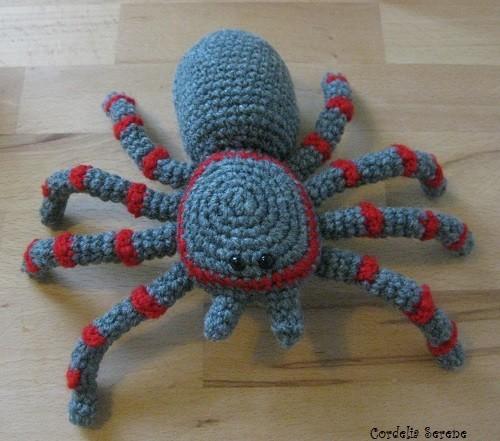 spider006.jpg