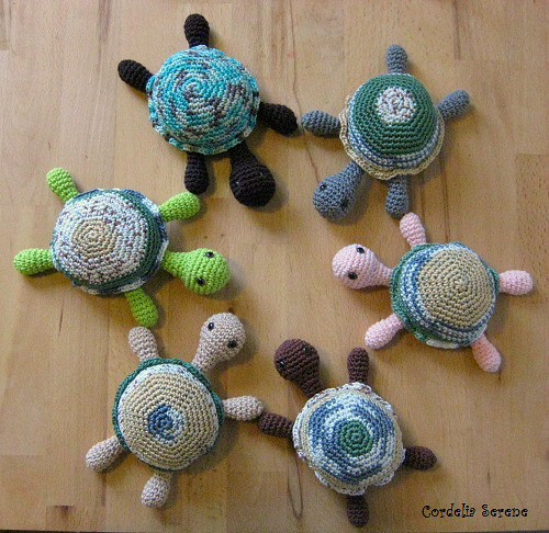 turtles002.jpg