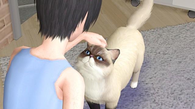 Sims2ep9%202015-12-24%2012-54-06-36.jpg