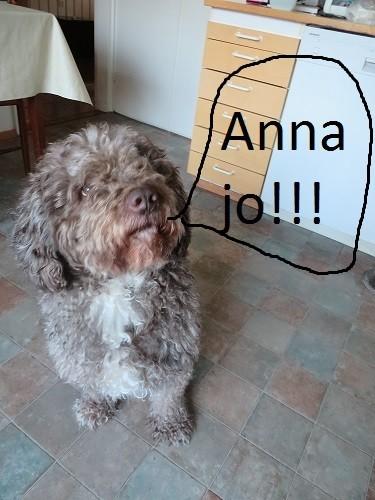 anna.jpg