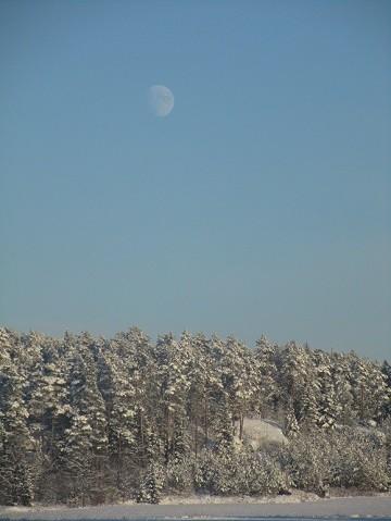 lumi7.jpg