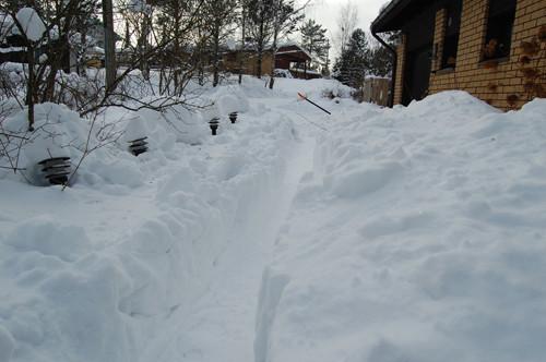 lumi2010.jpg