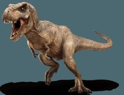 tyrannosaurus-rex-info-graphic.jpg