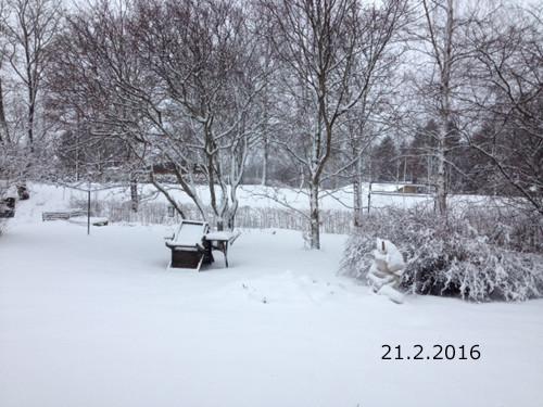 takapihalla.jpg