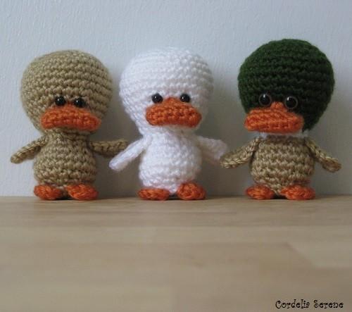 ducks012.jpg