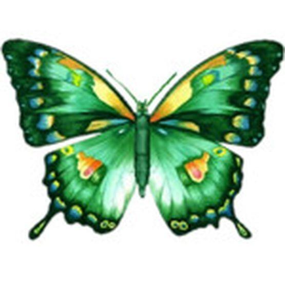 3327595_image_page_big_3045953671.jpg
