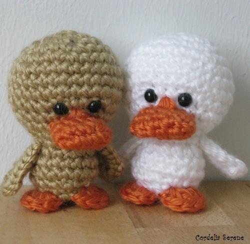 ducks007.jpg