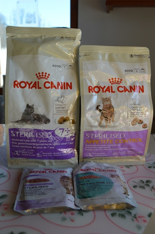 royal%20cani.jpg