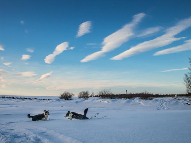 pilvet%20jutussa-10.jpg