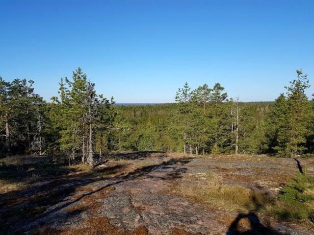 Kalliolla_Kukkulalla2.jpg