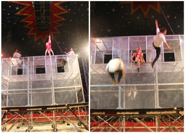 sirkuksessa4.jpg